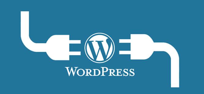 Most-popular-WordPress-plugins-to-use